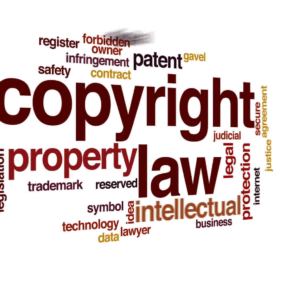 Copyright Challenges And Professional Help